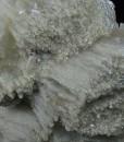 Calcite, Quartz, Dolomite, Chlorite