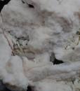 Manganoan Calcite, Chalcopyrite