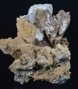 Dolomite, Quartz, Chalcedony